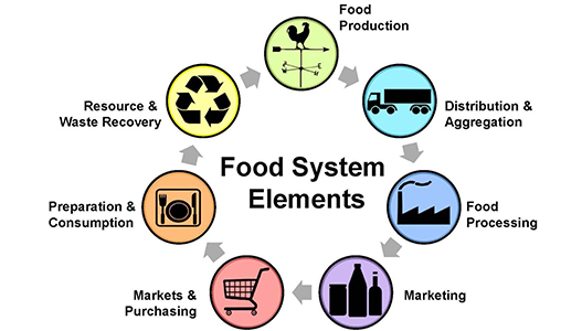 Local Foods System Diagram